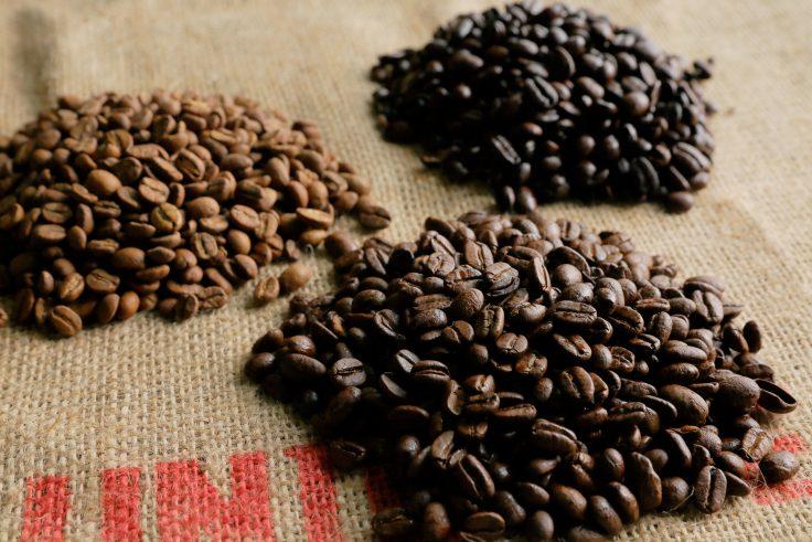 【愛知 一宮|開業】カフェの開業支援や仕入れなど経営の相談・サポート「珈豆珈琲フーズ」