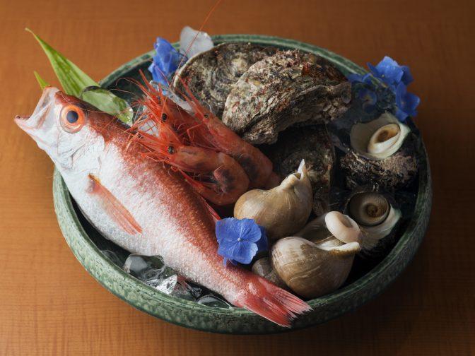 金沢市内・金沢駅周辺にある「大衆割烹 喜乃屋(きのや)」さんのクチコミレポート。金沢の郷土料理が味わえる老舗の割烹料理屋